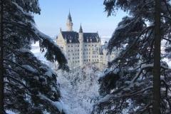 Blick auf Neuschwanstein im Winter